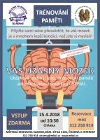 Váš úžasný mozek