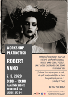 WORKSHOP PLATINOTISK - ROBERT VANO